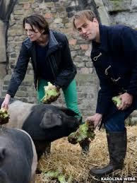 High welfare pigs bbc.co.uk