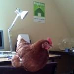 Office chuck